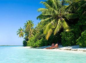 Strand und Palmen in der Karibik