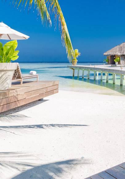 Buche jetzt deine Strandferien auf den Malediven