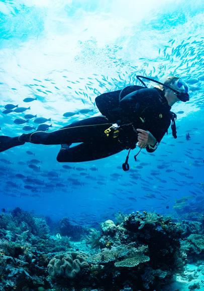 Abtauchen in die Tiefen griechischer Meere